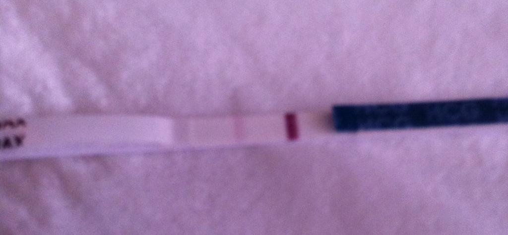 妊娠検査薬 日に日に濃くなる